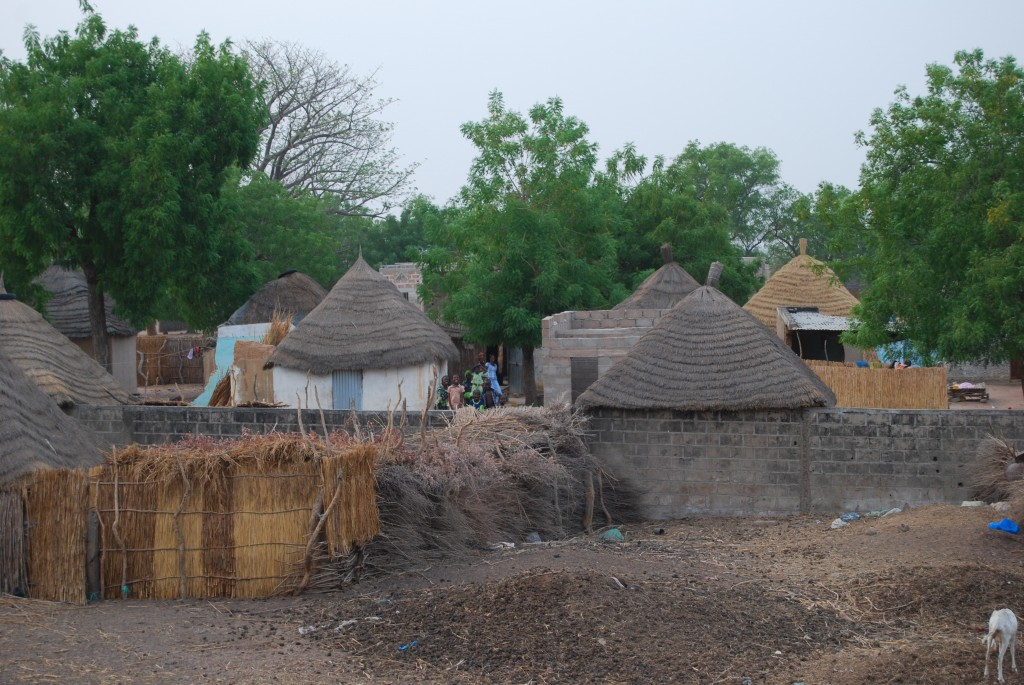 Scorcio delle capanne del villaggio di Ndioum